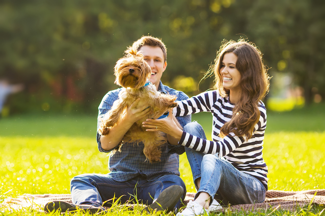 couple at dog park